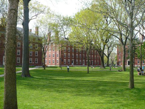 Boston and Harvard University